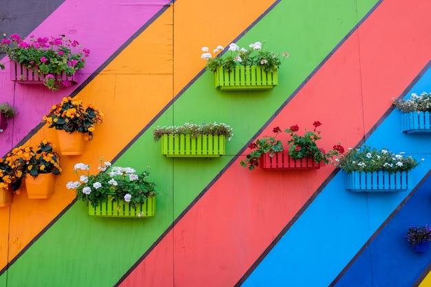 Muitas caixas de madeira multicoloridas com flores Foto Premium