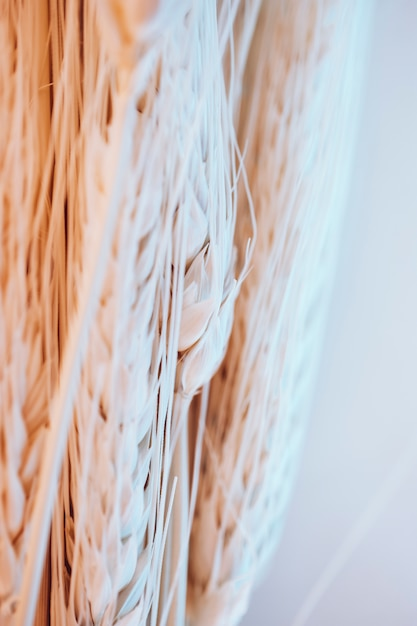 Muitas fibras e sementes de trigo Foto gratuita