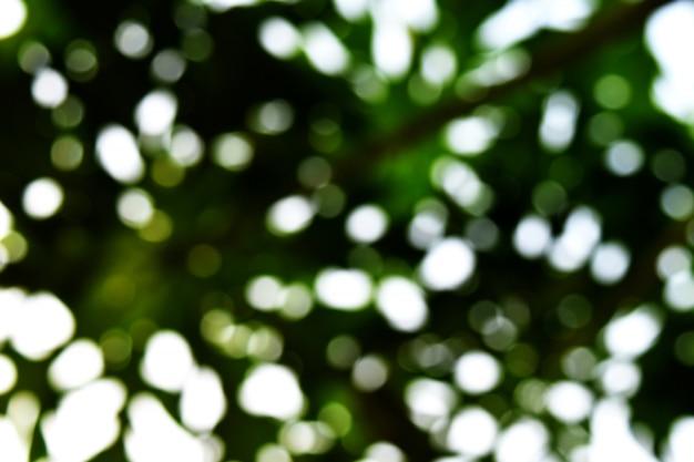 Muitos bokeh luz para fundo verde Foto Premium