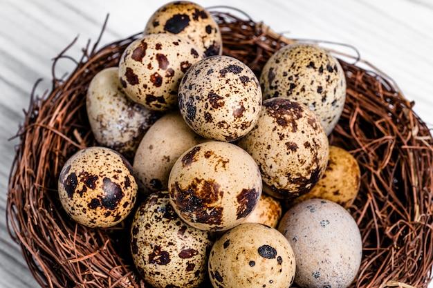 Muitos ovos de codorna de fragilidade orgânica com manchas marrons no ninho de galhos. Foto Premium