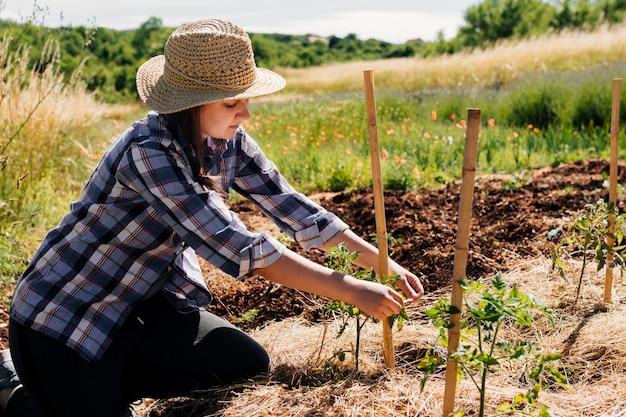 Mulher, ajoelhando, e, staking, em, a, jardim Foto gratuita
