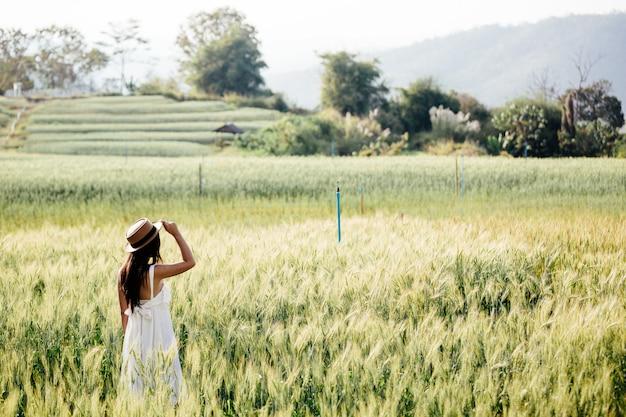 Mulher bonita que aprecia nos campos da cevada Foto gratuita