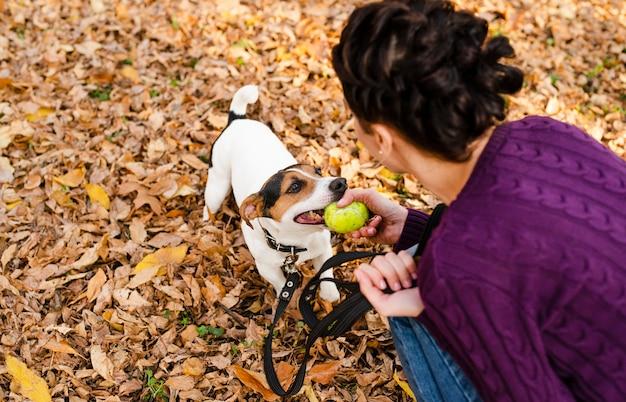 Mulher brincando com seu cachorro fofo Foto gratuita