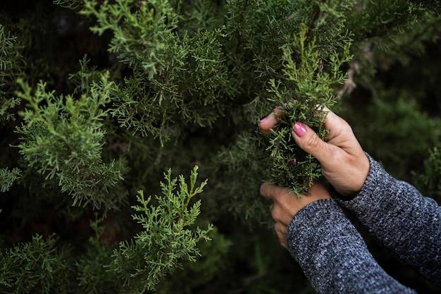 Mulher de close-up com árvore de natal Foto gratuita