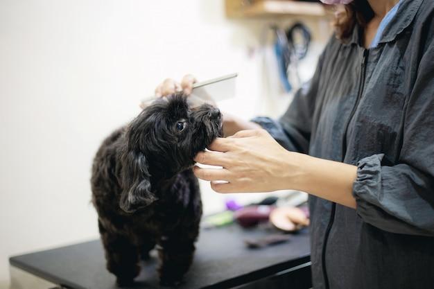 Mulher e cão na loja do animal de estimação. Foto Premium