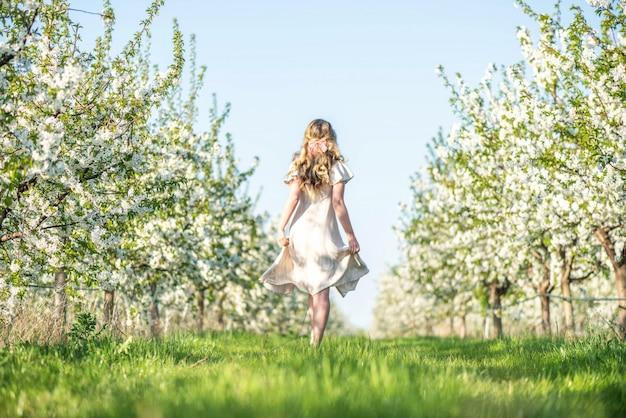 Mulher, em, cereja, florescer, pomar, em, primavera Foto Premium