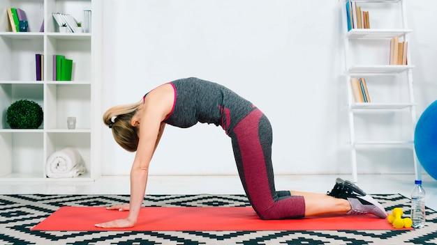 Mulher jovem, prática, ioga, fazendo, asana, emparelhado, com, gato, pose Foto gratuita