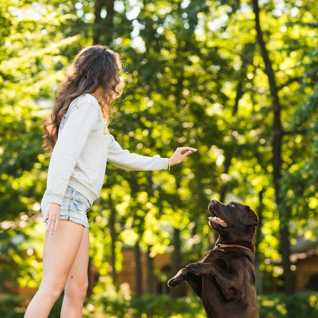 Mulher jovem, tocando, com, dela, cão, em, jardim Foto gratuita