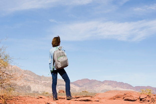 Mulher, mochila, admirar, paisagem Foto gratuita