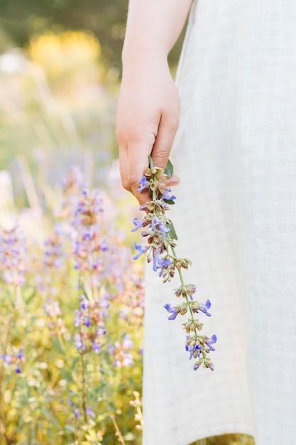 Mulher natureza, segurando flor Foto gratuita