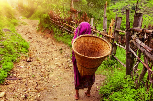 Mulher nepalesa com cesta de vime Foto Premium