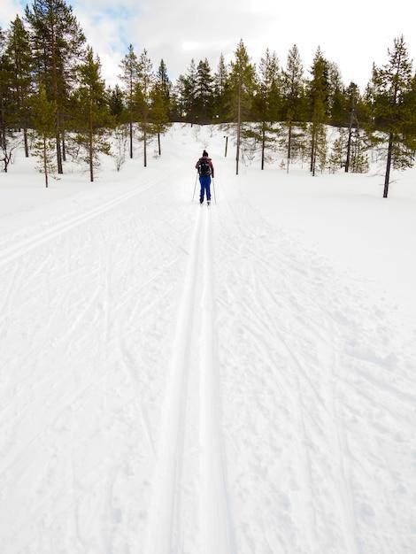 Mulher, país cruz esquia, em, inverno, nevado, paisagem Foto Premium