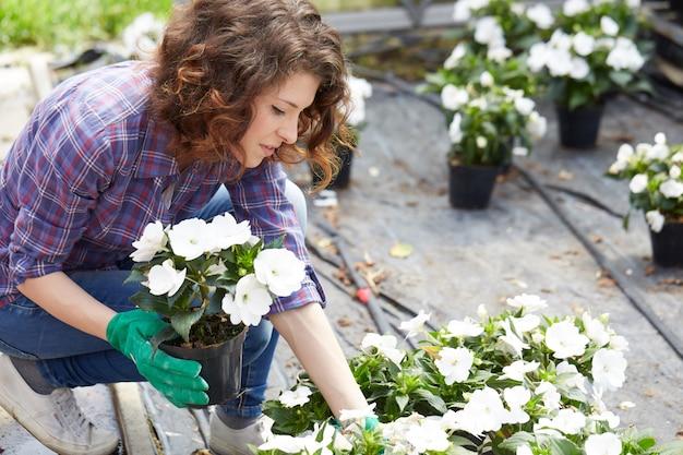 Mulher que trabalha em uma loja de jardinagem Foto Premium