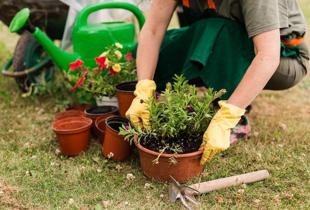 Mulher sênior, importar-se, a, flores Foto gratuita