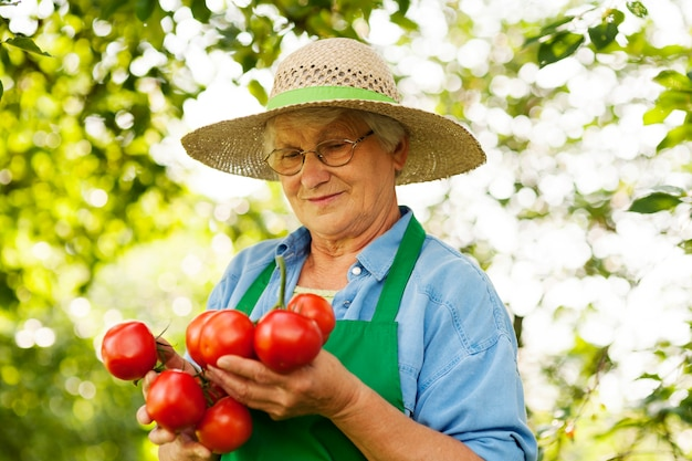Mulher sênior segurando tomates Foto gratuita
