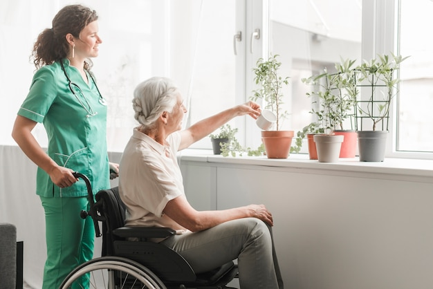 Mulher sênior, sentando, ligado, wheelchair, plantas molhando, com, enfermeira, estar, atrás de Foto gratuita