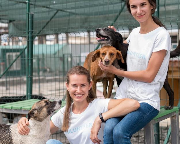 Mulher sorridente passando um tempo com cães de resgate fofos no abrigo Foto gratuita