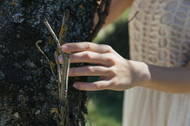 Mulher, tocar, tronco árvore Foto gratuita