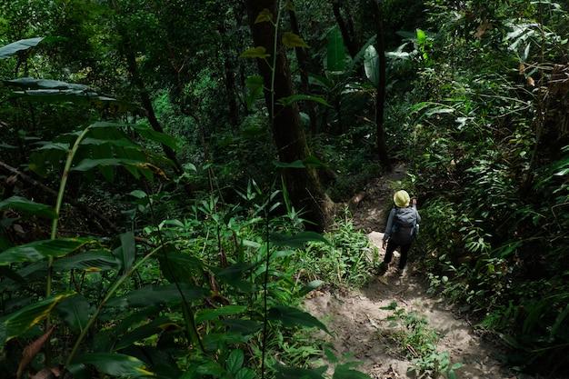 Mulher viajante andando com mochila na floresta. Foto Premium