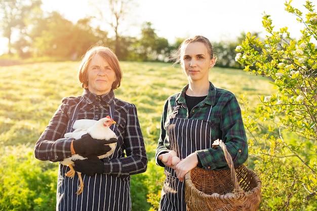 Mulheres na fazenda coletando ovos Foto Premium