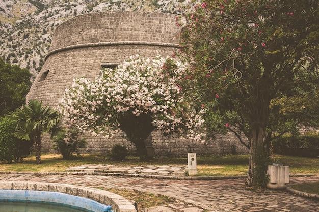 Muralha da antiga cidade montenegrina de kotor Foto Premium