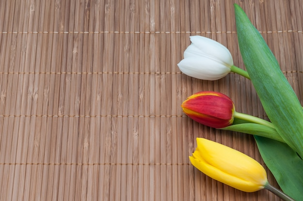 Na esteira de bambu do lado direito há três tulipas vermelhas amarelas e brancas. Foto Premium