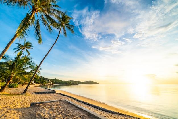 Na hora do sol na praia tropical e mar com coqueiro Foto Premium