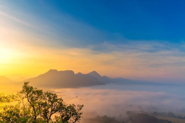 Nascer do sol com a névoa bela paisagem para relaxar na tailândia Foto Premium