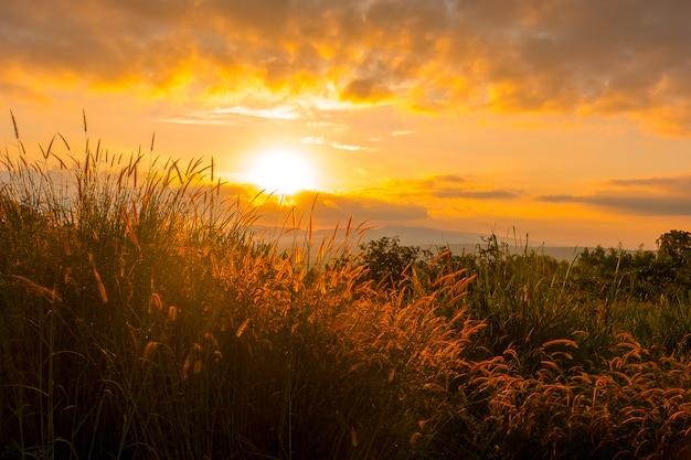 Nascer do sol na montanha com campos de grama na frente Foto Premium