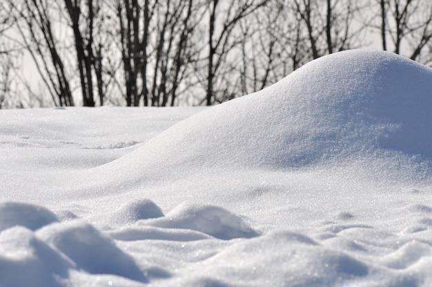 Neve fresca Foto Premium