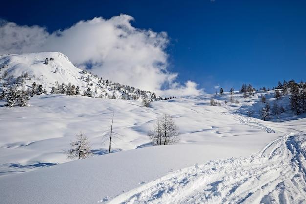 Neve nos alpes no inverno, paisagem cênica Foto Premium