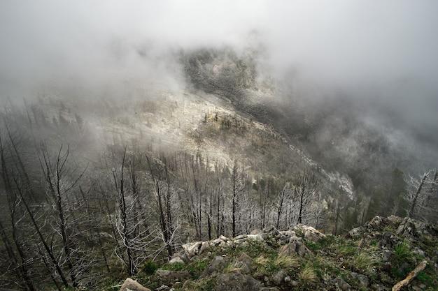 Nevoeiro e nuvem paisagem vale da montanha Foto Premium