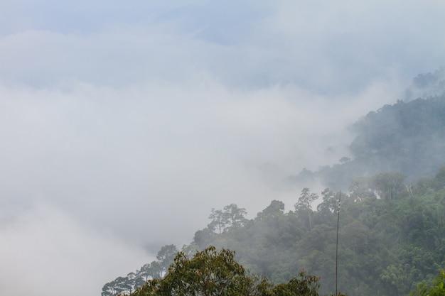 Nevoeiro, e, nuvem, vale montanha, paisagem Foto Premium