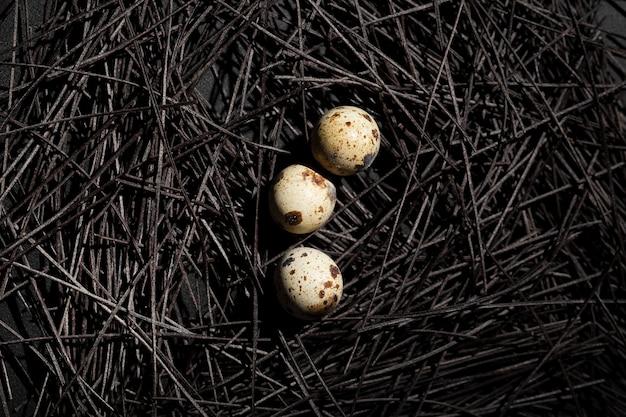 Ninho escuro com ovos de codorna Foto gratuita