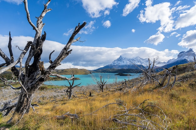 No parque nacional torres del paine, patagônia, chile, lago del pehoe. Foto Premium