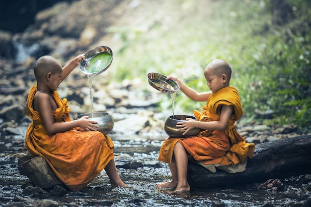 Noviço monge na tailândia Foto Premium