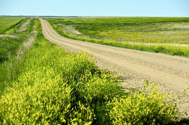 Nowhere road Foto gratuita