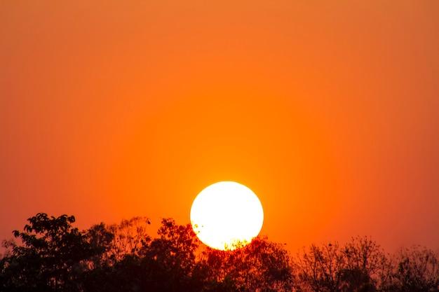 O aquecimento global do sol e queima, onda de calor sol quente, mudança climática Foto Premium