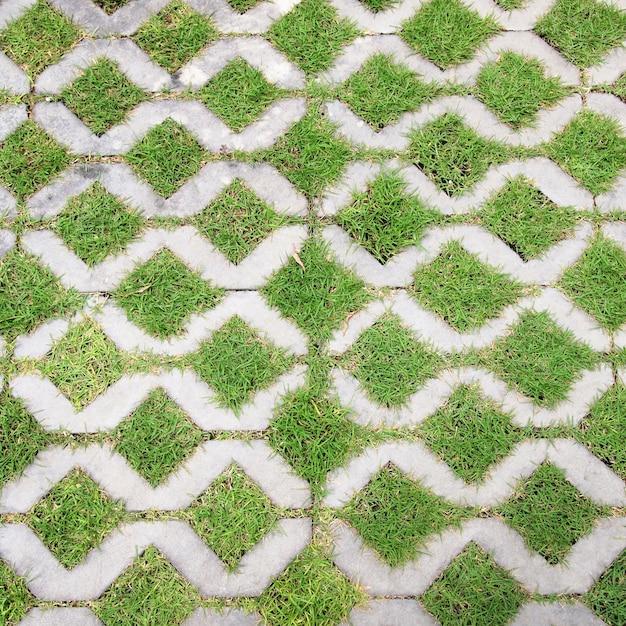 O caminho de bloco de pedra a pé no parque com fundo de grama verde Foto Premium