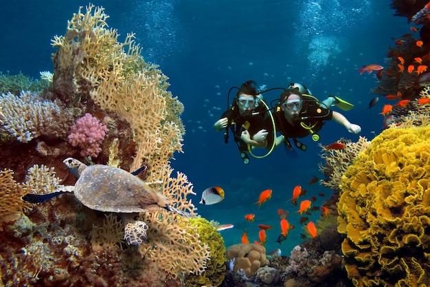 O casal apaixonado mergulha entre corais e peixes no oceano Foto Premium
