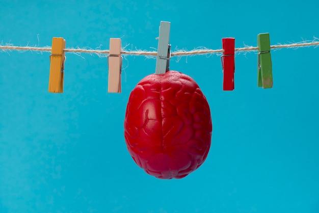 O cérebro de cor vermelha é seco em um varal, em um prendedor de roupa. Foto Premium