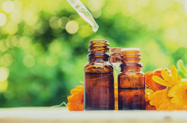 O extrato de calêndula. plantas medicinais. foco seletivo. Foto Premium