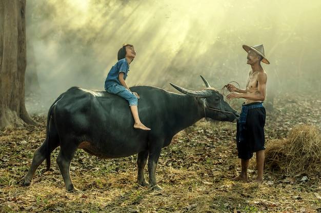 O fazendeiro asiático e sua filha montam em um búfalo sejam felizes em sakonnakhon, tailândia. Foto Premium