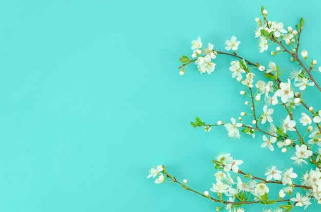 O fundo da mola com ramos de árvore brancos da flor ilumina o fundo da hortelã. Foto Premium