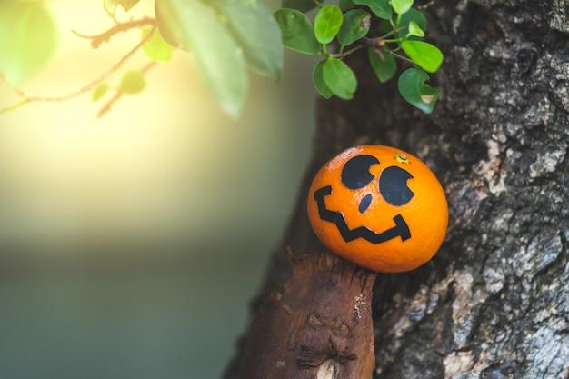 O grupo de laranjas enfrenta a pintura com o assustador no dia do partido do dia das bruxas no lugar do jardim. Foto Premium