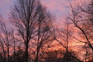 Resultado de imagem para Sol de inverno