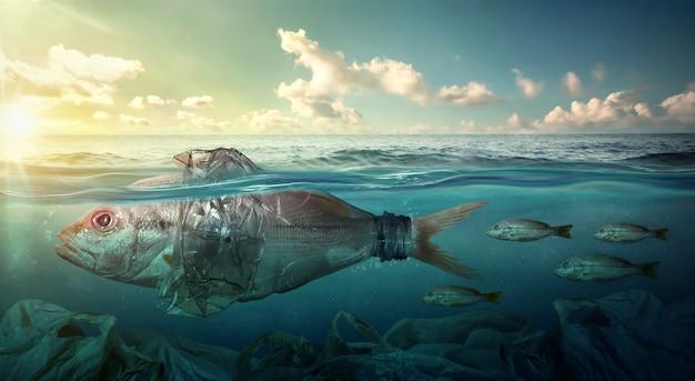 O peixe nada entre a poluição plástica do oceano. conceito de meio ambiente Foto Premium