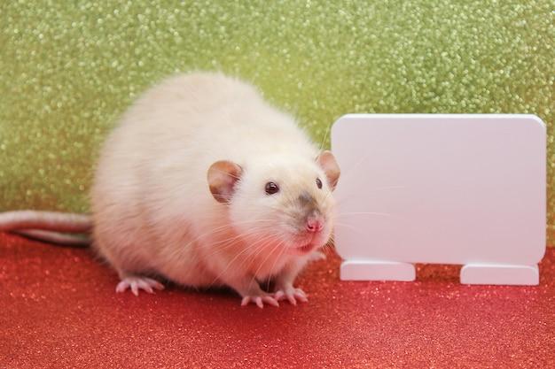 O rato é um símbolo do novo ano de 2020. chapa branca para escrever texto Foto Premium