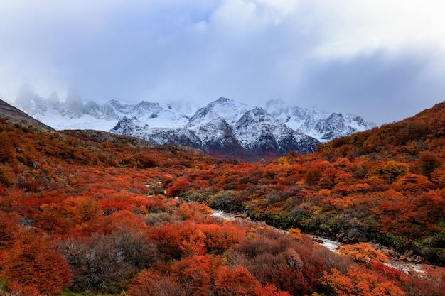 O topo da montanha de fitzroy, escondido nas nuvens. vista no rio pequeno e na floresta da cor vermelha no patagonia, argentina. andes Foto Premium
