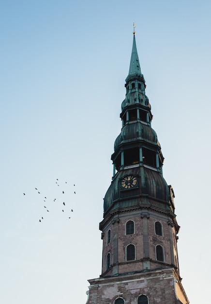 O topo de uma torre do relógio com topo verde e pássaros voando ao lado Foto gratuita